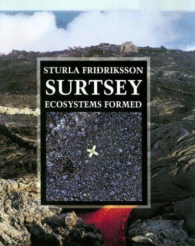 Download Surtsey